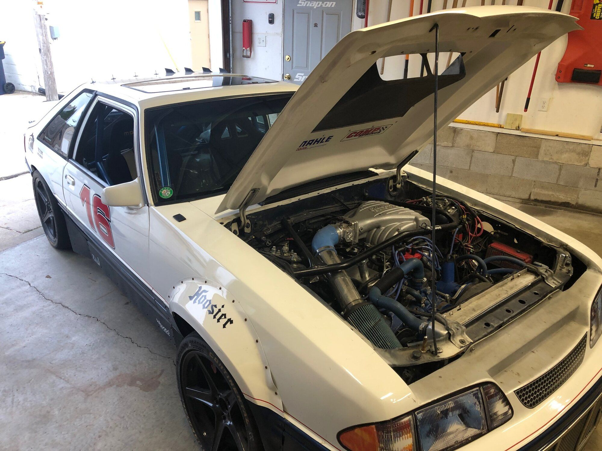 Mustang 8.jpg