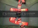 Sub_Belt_2.jpg