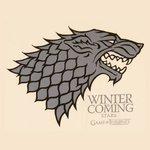 -Stark-Winter-Is-Coming-T-Shirt-Game-of-Thrones-sq.jpg